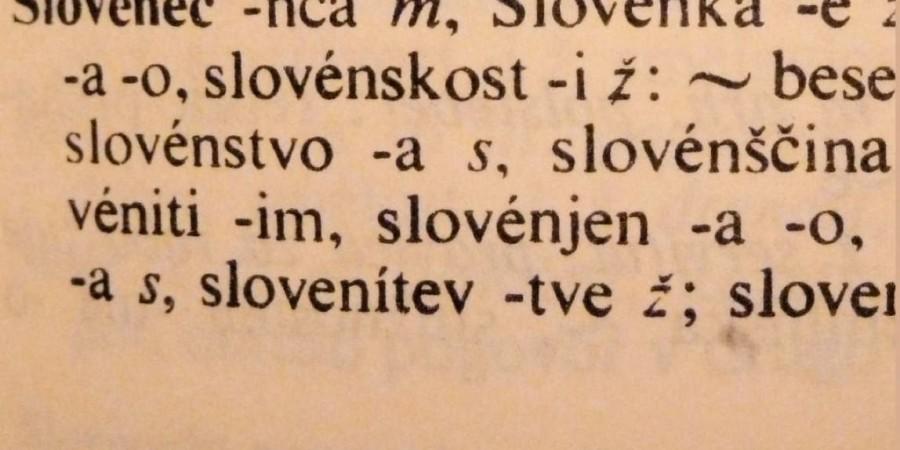 Slovenska identiteta in slovenski nacionalni karakter