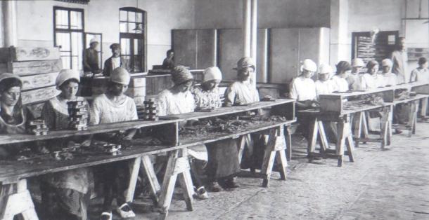 Ribja predelovalna industrija v Izoli, 1. del (od začetkov do prve svetovne vojne)