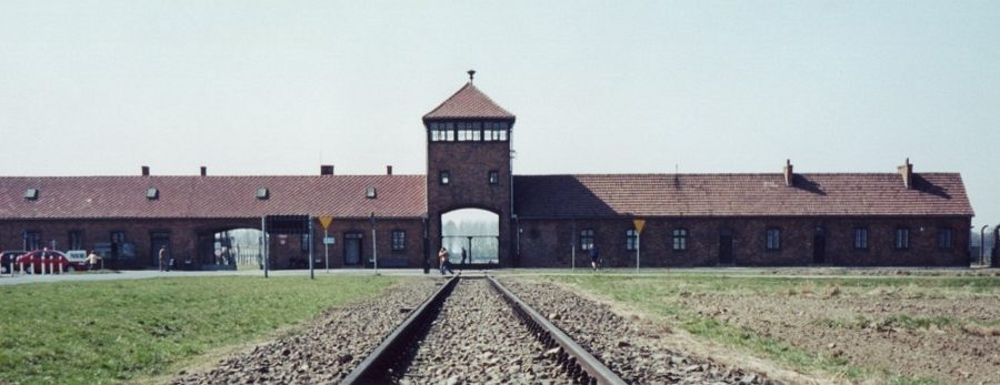 Nacistični uslužbenci koncentracijskih taborišč (1. del)