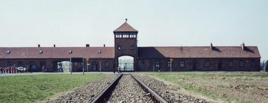 Nacistični uslužbenci koncentracijskih taborišč (2. del)